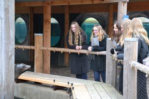 Genåbning - på tur til Odense zoo